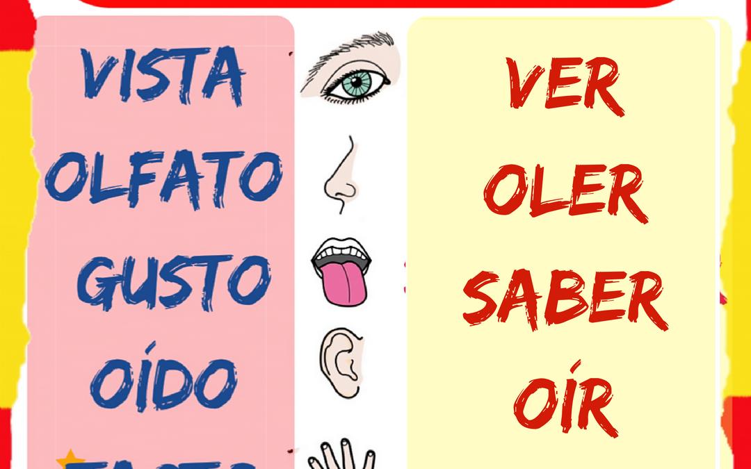 Los cinco sentidos y sus verbos
